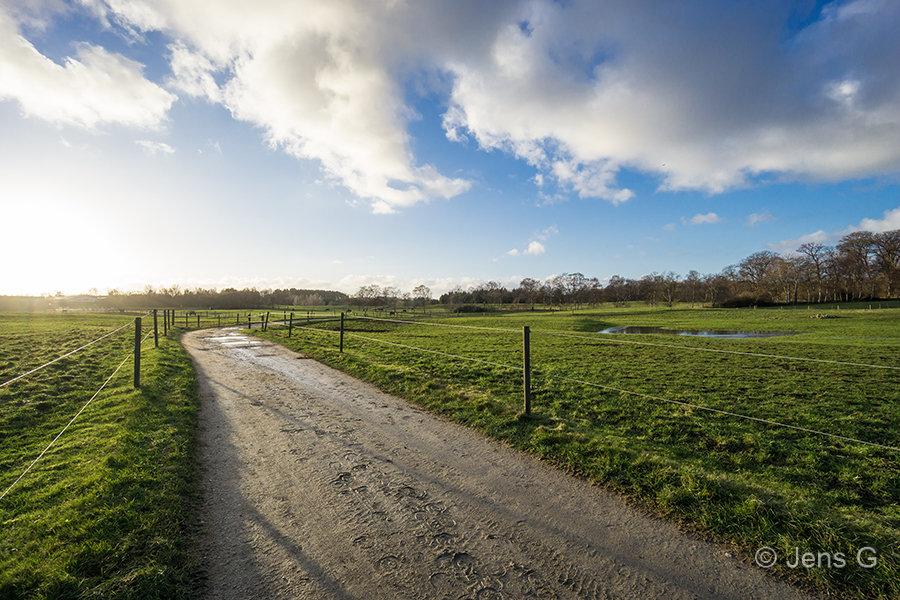 Landskab med hestefolde