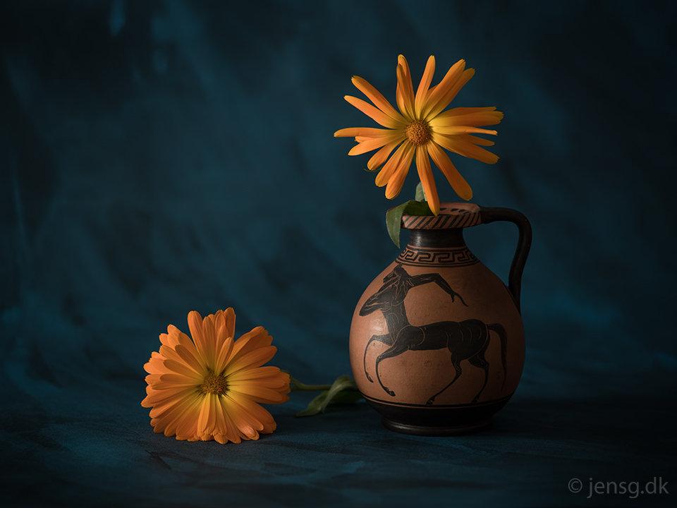 Stilleben af kande og orange blomster på blålig baggrund