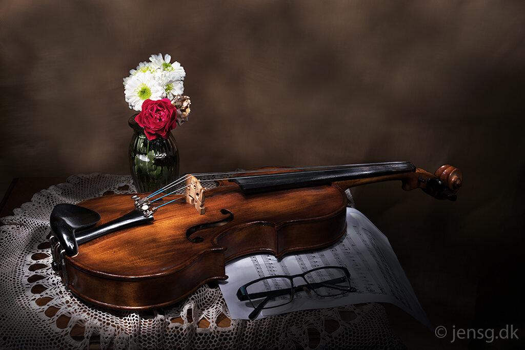 Violin stilleben